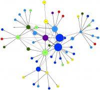 """Publikation """"Vernetztes Unternehmensengagement"""" erschienen"""